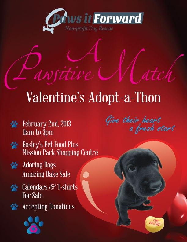 Paws if Forward: Adopt-a-Thon