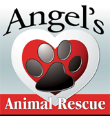 Angel's Animal Rescue Logo