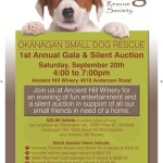 Dog Adoption | WOOFY WORLD KENNELS & DAYCARE